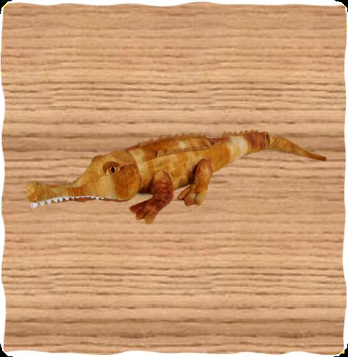 COTW 60cm Brown Tomistoma