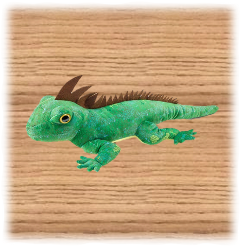 Petjes 50cm Green Iguana