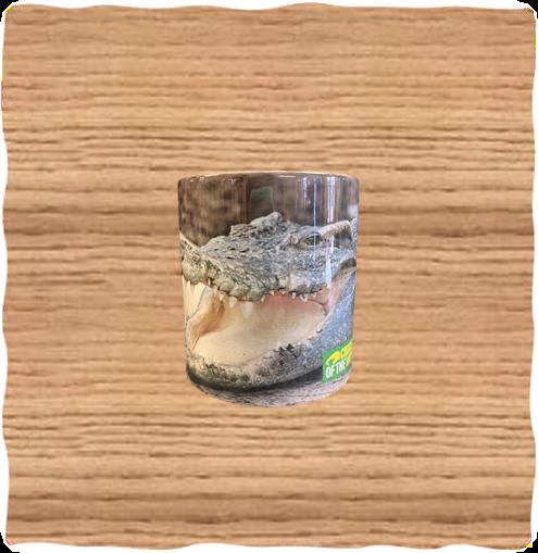COTW Siamese Mug