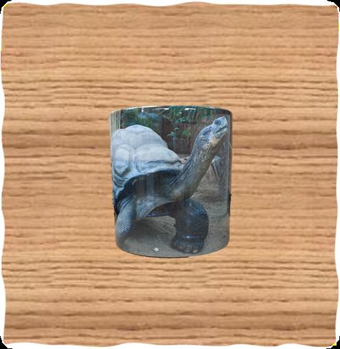 COTW Galapagos Mug