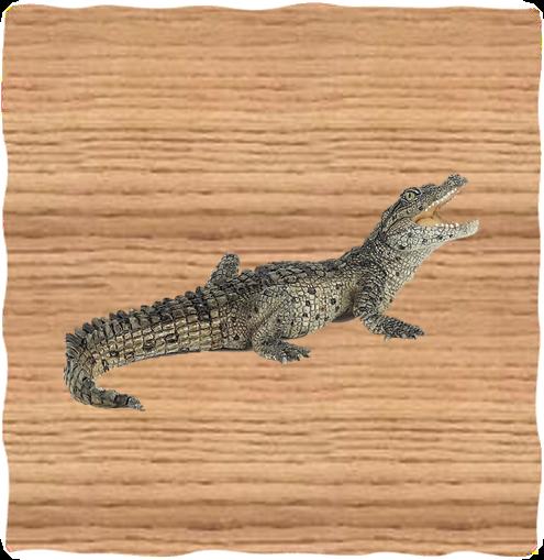 Papo Baby Crocodile